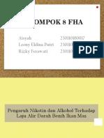 Presentasi praktikum FHA