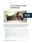 Dehasse le chien agressif 2008 origines chien chat fandeluxe Image collections