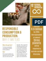 consumption and production un