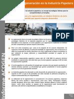 Informe Acogen Cogeneracion Sector Papelero Marzo 2013i