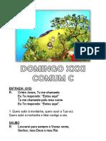 XXXI Comum