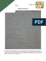 7. Fisiologia placentaria