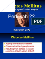 Diabetes 2008 Kuliah Koass