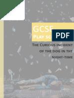 1--Curious-Incident-Guide.pdf
