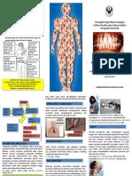 leaflet oral-sistemic health.pdf