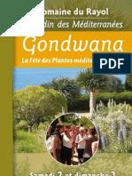 Programme Gondwana 2010
