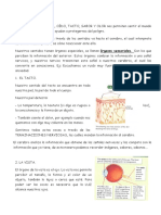 TEMA 2 Español
