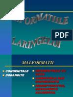 2.-MALFORMATIITRAUMATISMECORPI-STRAINI