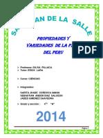 MONOGRAFÍA DE LA PAPa 01.docx