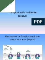 Transport Activ