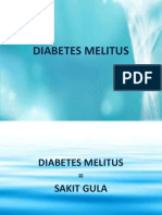 Diabetes Melitus Penyuluhan