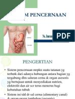 Anfis Sistem Pencernaan 1
