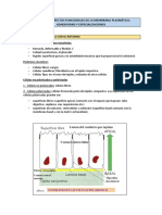 Tema 2 (a) - Membrana Plasmatica - Proteinas de Adhesion