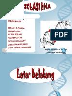 ISOLASI DNA FIX BGT.ppt