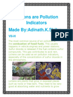 Lichens Are Pollution Indicators
