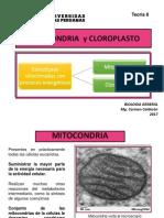 Bio Gen Teoria 8 2017 Mitocondrias y Cloroplastos