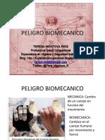 peligrobiomecanico-140813170651-phpapp02