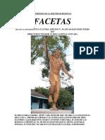 Facetas y Su Edición