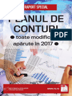 Raport Special - Planul de Conturi170905093134