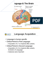 Language and Brain