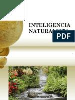 2B Inteligencianaturista 091019150554 Phpapp02 (2)