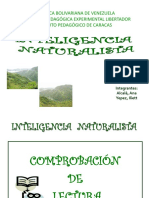 2 Inteligencia Naturalista 1216145007504885 8