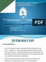 TESIS-EXPO 02.pptx