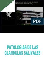 24 Patologiasdelasglandulassalivales 130706232229 Phpapp01