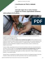 Legalización de La Marihuana en Perú a Debate _ Actualidad _ Peru21