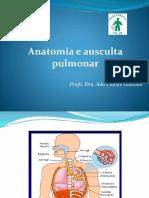 Anatomia e Ausculta Pulmonar 2017