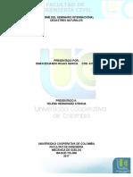 Informe Seminario de Desastres Internacionales