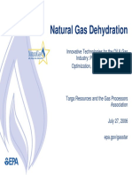 118422391-Gas-Dehydration.pdf
