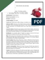 Ficha técnica del betabel  y espinaca.docx