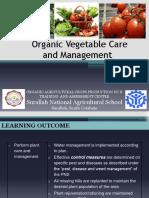Organic Vegetable Care.pptx