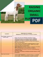 PPT Raising Organic Goat