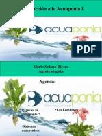 Introducción a La Acuaponia I