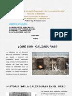 257271467-CALZADURAS