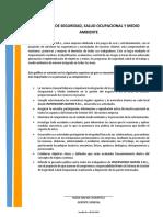Política Ssoma 2017 Inversiones Napan
