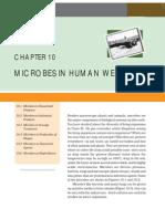 10microbes in Human Welfare