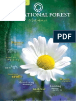 The National Forest and Beyond Visitor Guide
