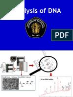 Analisis DNA Samples