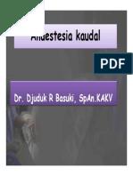 Anaestesia kaudal
