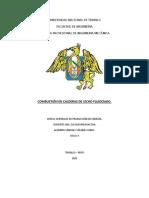 LECHO_FLUIDIZADO.docx