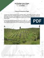 Protocolo Evaluacion de Plagas 0815