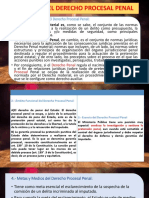 Funcion Del Derecho Procesal Penal