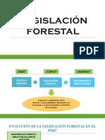 Política Forestal