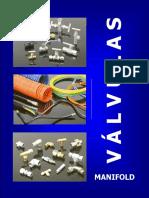 P_V_Manifold_v4.pdf