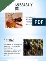 Ceras,Grasas y Aceites Original