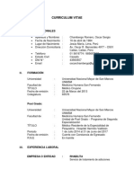 Curriculum Vitae Oscar Chambergo Formato1