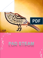 PAD-STEAM-MACHINE.ppt